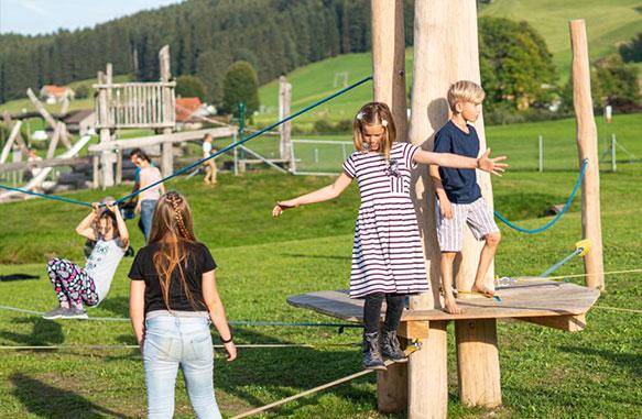Robinienholz Spielplatzbau 2020