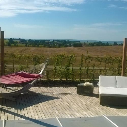 robinie-akazie-terrasse-pool-02.jpg
