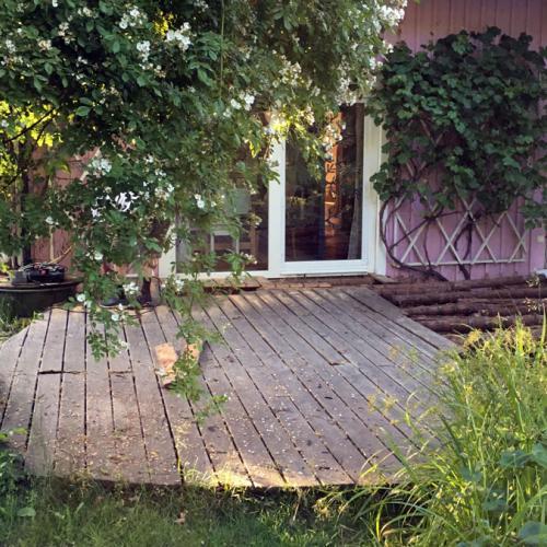 robinie-akazie-terrasse-001.jpg